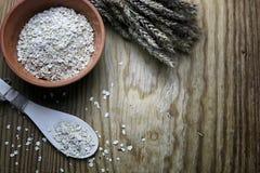 Bacia de cereal da grão de brotos Fotografia de Stock
