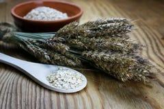 Bacia de cereal da grão de brotos Foto de Stock