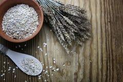 Bacia de cereal da grão de brotos Imagem de Stock