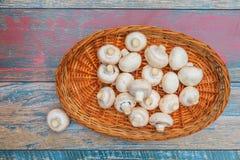 Bacia de cogumelos e de um estranho Foto de Stock