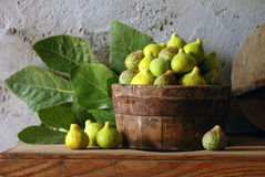 Bacia de figos verdes Foto de Stock Royalty Free