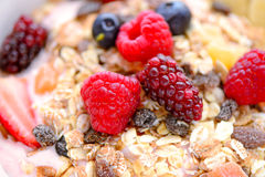 Bacia de fruto de Acai Fotografia de Stock Royalty Free