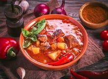 Bacia de goulash e de ingredientes húngaros ao redor foto de stock royalty free