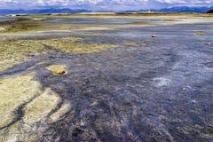 Bacia de Great Salt Lake Foto de Stock Royalty Free