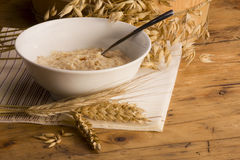Bacia de Oatmeal Fotografia de Stock Royalty Free
