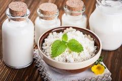 Bacia de requeijão e de leite Imagem de Stock