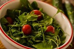 Bacia de salada com legumes frescos Imagem de Stock Royalty Free