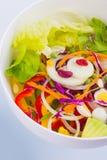Bacia de salada fresca da mistura Fotos de Stock Royalty Free