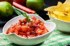 Bacia de salsa fresca com microplaquetas de tortilha Imagem de Stock