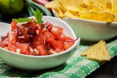 Bacia de salsa fresca com microplaquetas de tortilha Imagem de Stock Royalty Free