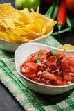 Bacia de salsa fresca com microplaquetas de tortilha Foto de Stock