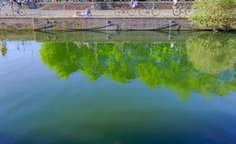 Bacia de Shadwell, vista do dockside com reflexões no wat fotos de stock royalty free