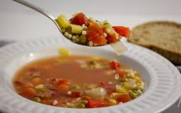 Bacia de sopa Fotografia de Stock