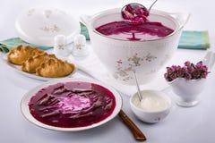 Bacia de sopa com beterrabas, creme de leite Imagens de Stock Royalty Free