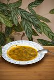 Bacia de sopa com colher Fotos de Stock