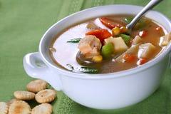 Bacia de sopa de macarronete da galinha Imagem de Stock Royalty Free