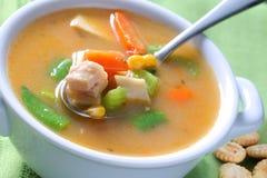 Bacia de sopa de macarronete da galinha Imagens de Stock