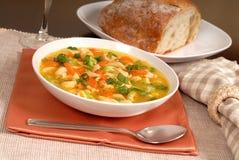 Bacia de sopa de macarronete da galinha com pão rústico Fotos de Stock Royalty Free
