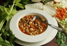 Bacia de sopa do minestrone Fotografia de Stock