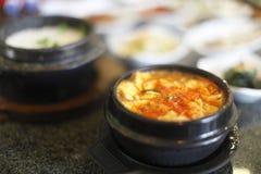 Bacia de sopa picante do tofu Fotos de Stock Royalty Free