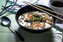 Bacia de sopa vegetal asiática do macarronete imagem de stock