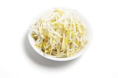 Bacia de Sprouts de feijão Imagem de Stock
