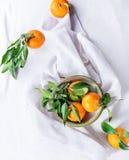 Bacia de tangerinas com folhas Imagem de Stock