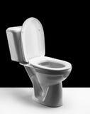 Bacia de toalete Fotos de Stock Royalty Free