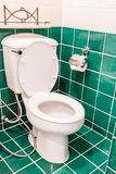 Bacia de toalete Foto de Stock