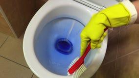 Bacia de toalete limpa da mulher com escova video estoque