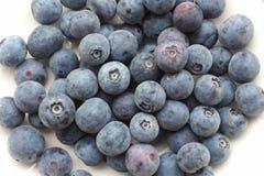 Bacia de uvas-do-monte frescas Imagem de Stock Royalty Free