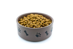 Bacia do alimento de cão Fotos de Stock Royalty Free