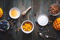 Bacia do batido da manga com manga, banana, Granola, mirtilo e coco para o café da manhã saudável foto de stock