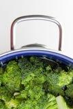 Bacia dos bróculos Imagens de Stock Royalty Free
