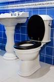 Bacia e dissipador de toalete Fotografia de Stock