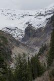 Bacia hidrográfica da geleira de Nisqually Foto de Stock