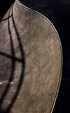 Bacia leve do patim da manhã Imagens de Stock