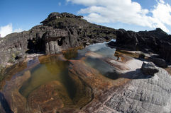 Bacia na parte superior do platô de Roraima Fotografia de Stock Royalty Free