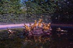 Bacia pequena do parque do palácio de Versalhes perto de Paris fotografia de stock
