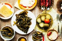 Bacia posta de conserva pepino com pimenta e alho Grupo de fermen Fotografia de Stock Royalty Free
