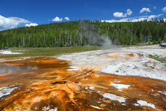 Bacia superior do geyser de Yellowstone Imagem de Stock