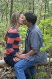 Baciare delle coppie fotografie stock libere da diritti