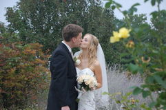 Baciare delle coppie di cerimonia nuziale Fotografie Stock Libere da Diritti