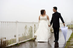 baciare dello sposo della sposa Fotografie Stock