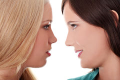 Baciare femminile degli amanti Immagine Stock
