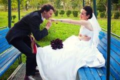 Baciare la mano della sposa Fotografie Stock