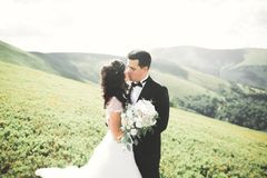 Baciare le coppie di nozze che restano bello paesaggio immagine stock