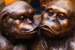 Baciare le scimmie Fotografia Stock