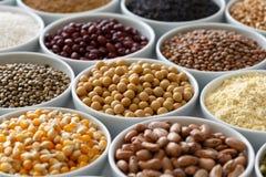 Bacias brancas arranjadas com pulsos crus, grões e sementes em w imagens de stock royalty free