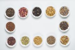 Bacias brancas com as ervas diferentes para a infusão Fotografia de Stock Royalty Free